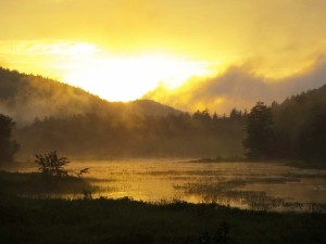 river in mist at sunset 2 (2)